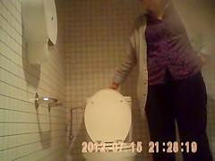 mature panties hairy hidden spy toilets sazz