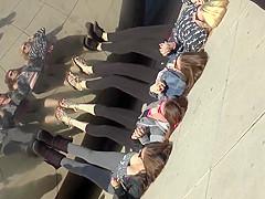 Chicago Leggings