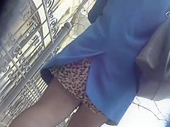 Upskirt Stockings 1