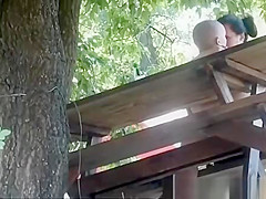 Couple fucking in a park