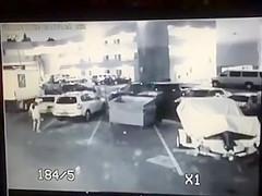 Surveillance camera films the desperate girl taking a piss