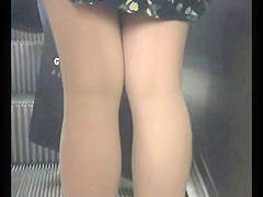 Wonderful legs of a young lady in pantyhose - voyeur
