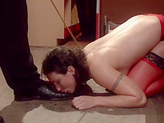 Brunette anal fucked in records shop