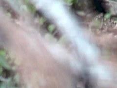 Girls Pissing voyeur video 116
