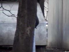 Girls Pissing voyeur video 191