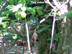 Girls Pissing voyeur video 257