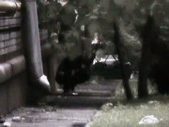 Teen student hides to piss beside a building voyeur video