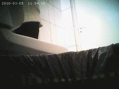 Cutie peeing before a public toilet spy cam
