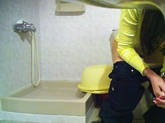 Girl showed hairy cunt on toilet cam when walked for paper