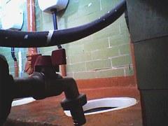 Amateur females in public toilet spread on the voyeur cam